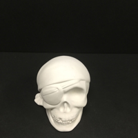 Skull Collectible